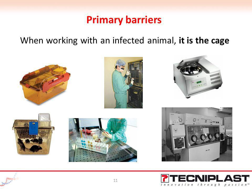 When working with an infected animal, it is the cage