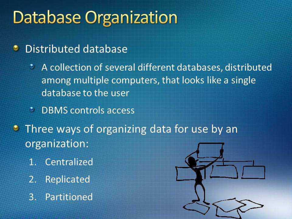 Database Organization