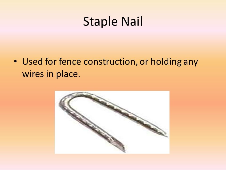 Staple Nail Used for fence construction, or holding any wires in place.