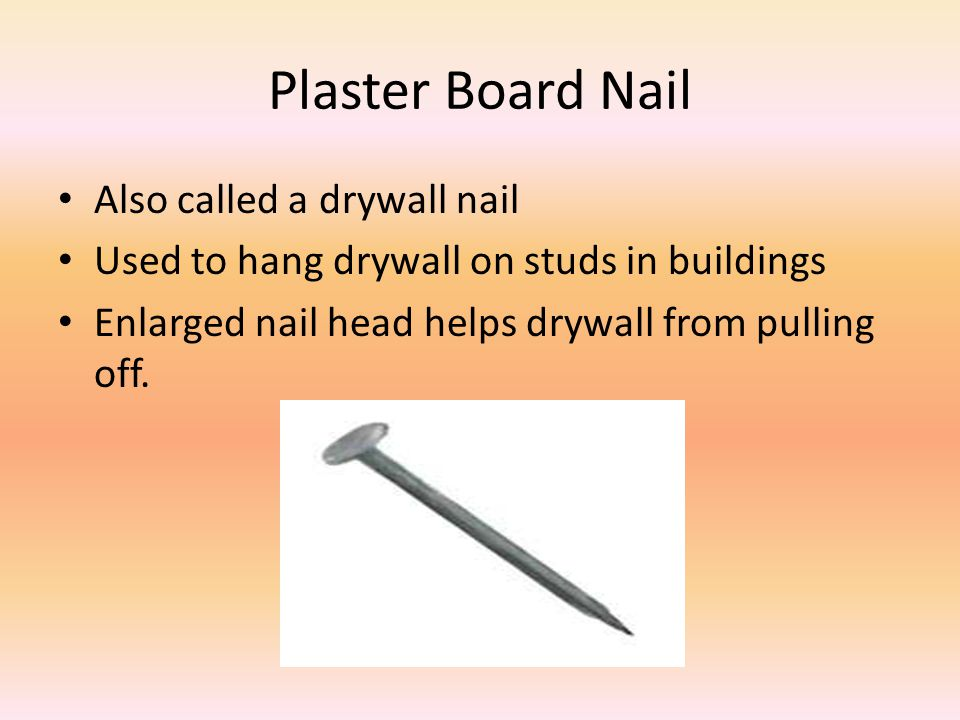 Plaster Board Nail Also called a drywall nail