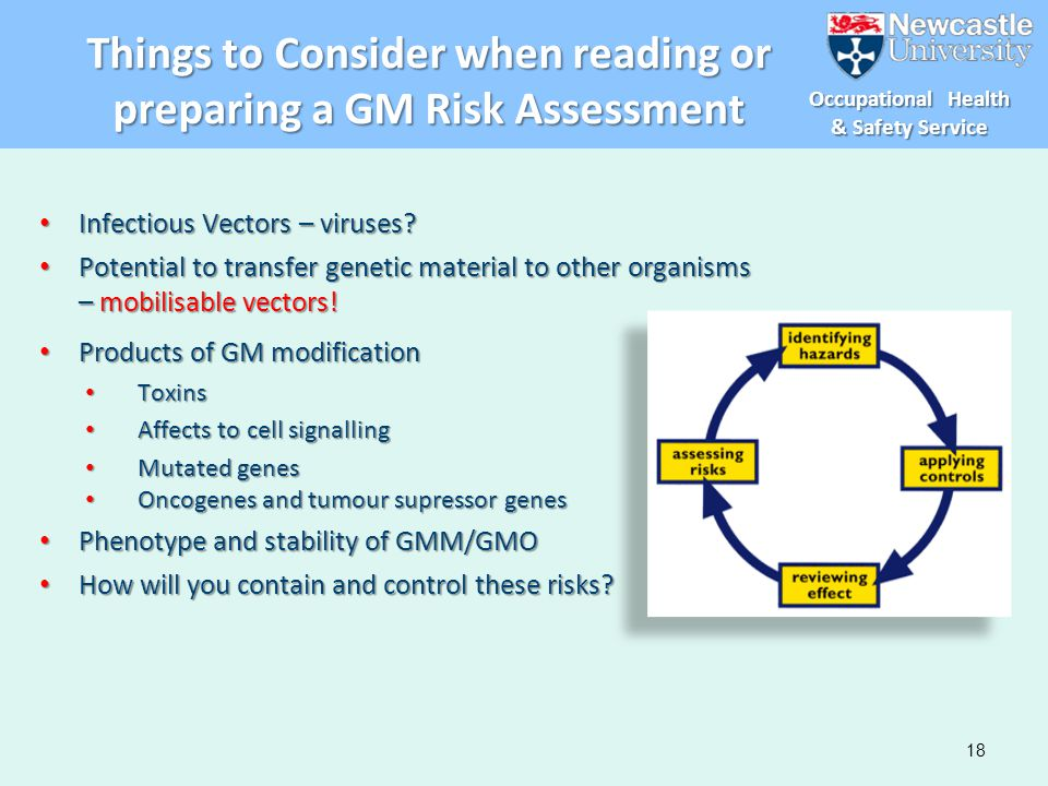 Things to Consider when reading or preparing a GM Risk Assessment