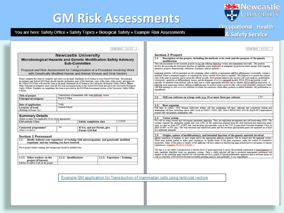GM Risk Assessments example RA available