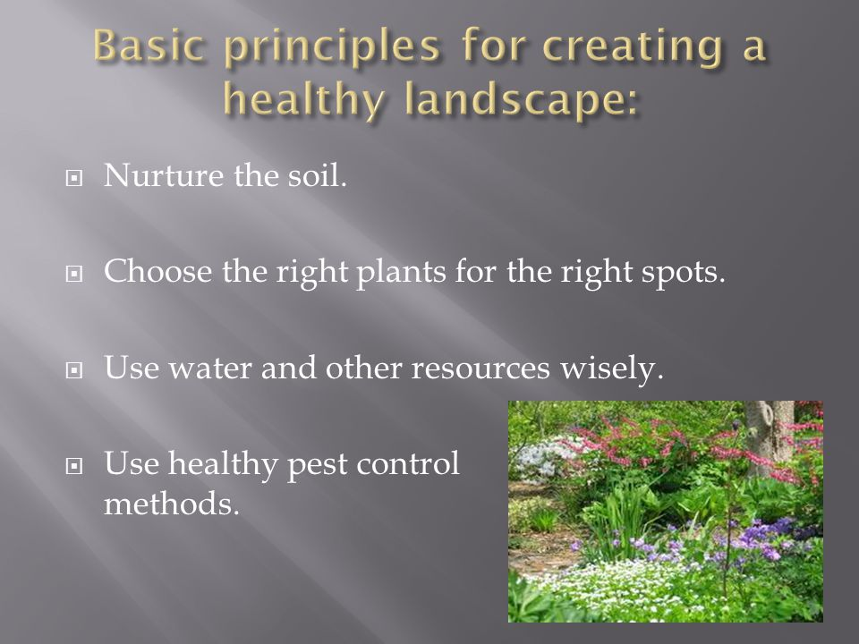 Basic principles for creating a healthy landscape: