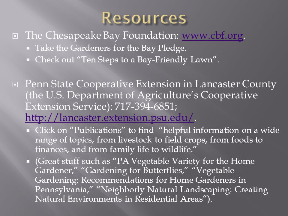 Resources The Chesapeake Bay Foundation: www.cbf.org.