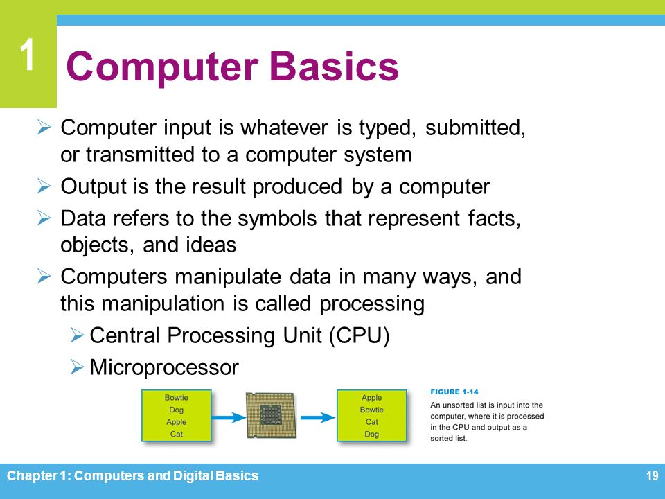 Computer Basics Computer input is whatever is typed, submitted, or transmitted to a computer system.