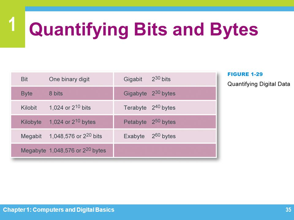 Quantifying Bits and Bytes