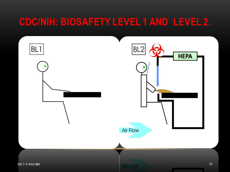 CDC/NIH: Biosafety Level 1 and Level 2.