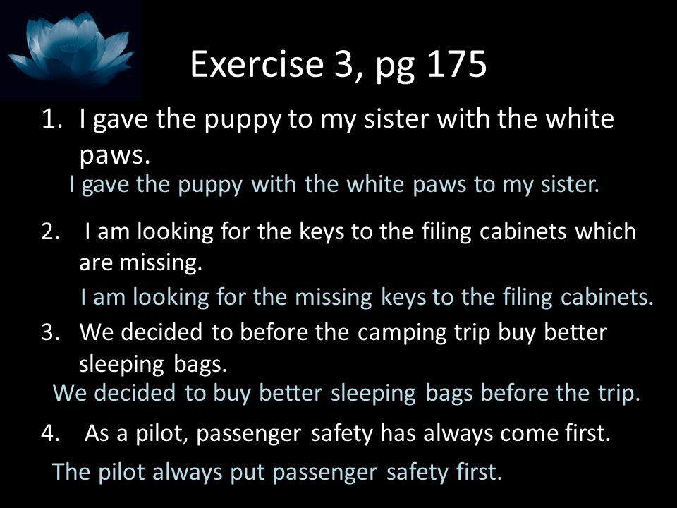 Exercise 3, pg 175 I gave the puppy to my sister with the white paws.