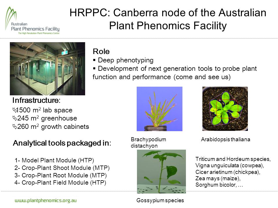 HRPPC: Canberra node of the Australian Plant Phenomics Facility