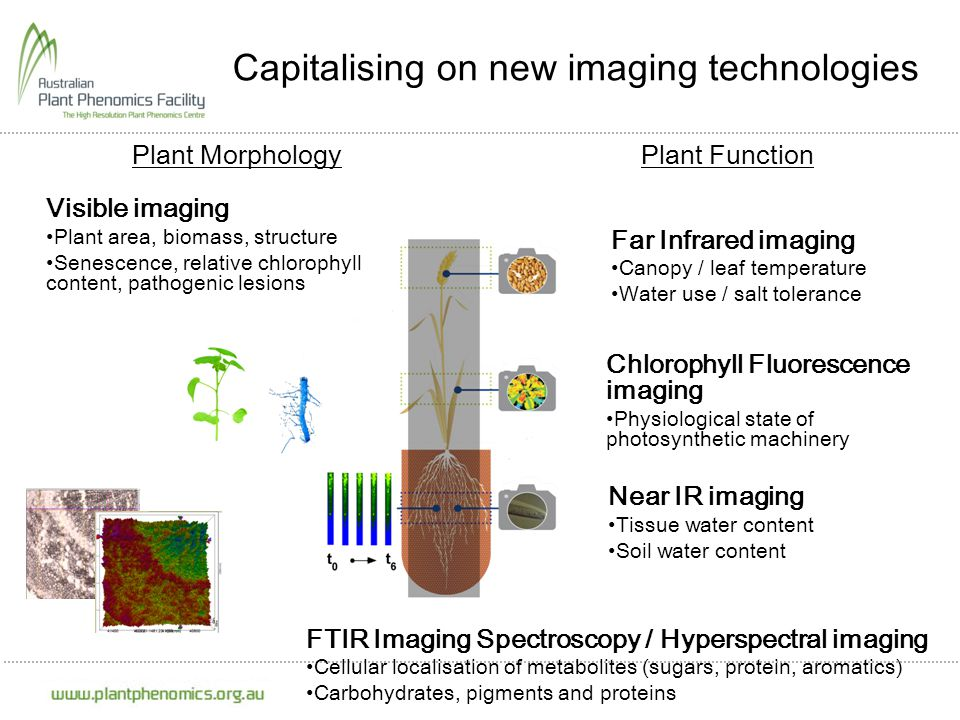 Capitalising on new imaging technologies