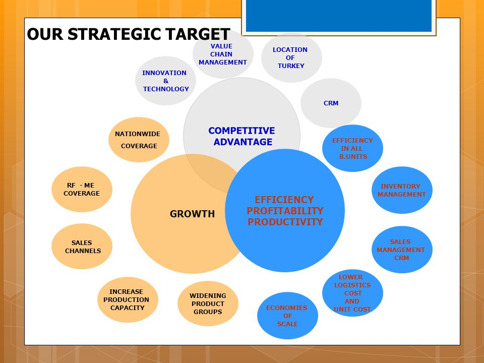 OUR STRATEGIC TARGET EFFICIENCY PROFITABILITY GROWTH PRODUCTIVITY