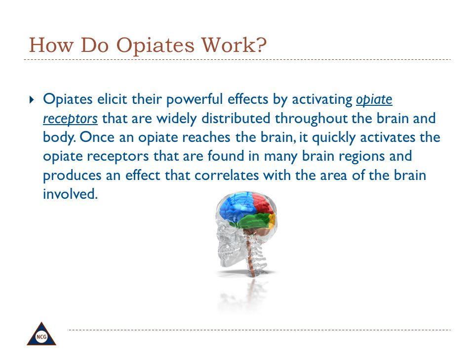 How Do Opiates Work