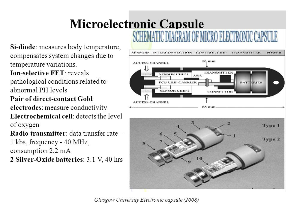 Microelectronic Capsule