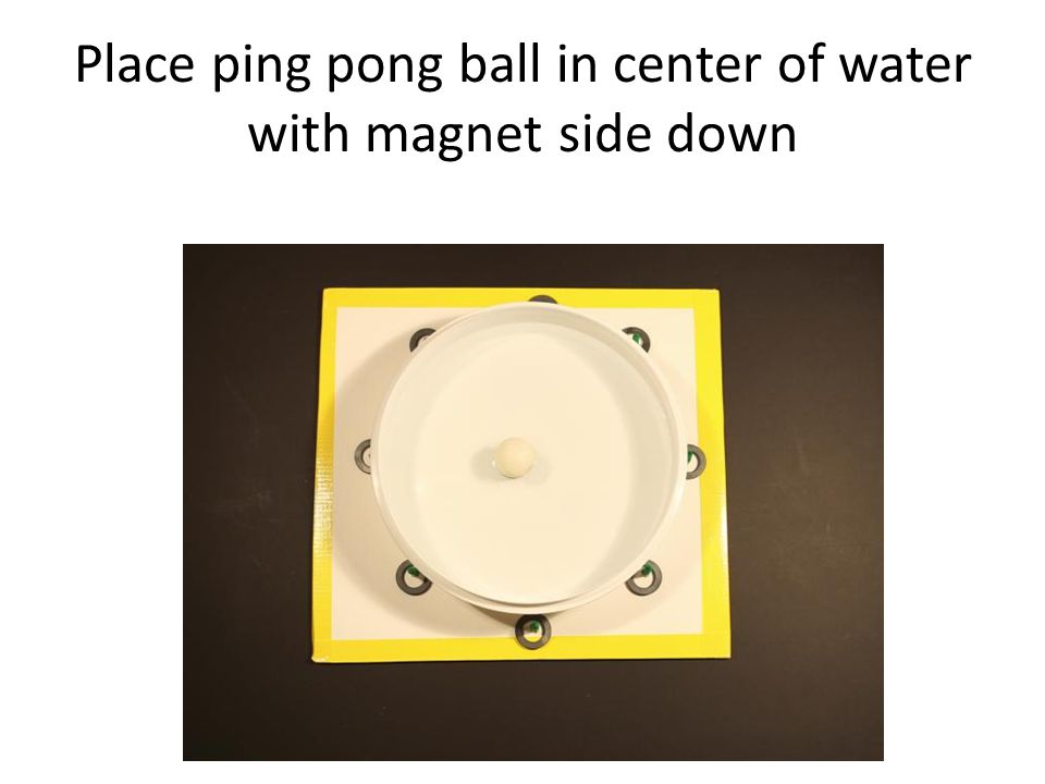 Place ping pong ball in center of water with magnet side down