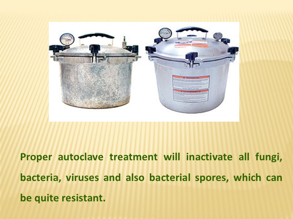 Proper autoclave treatment will inactivate all fungi, bacteria, viruses and also bacterial spores, which can be quite resistant.