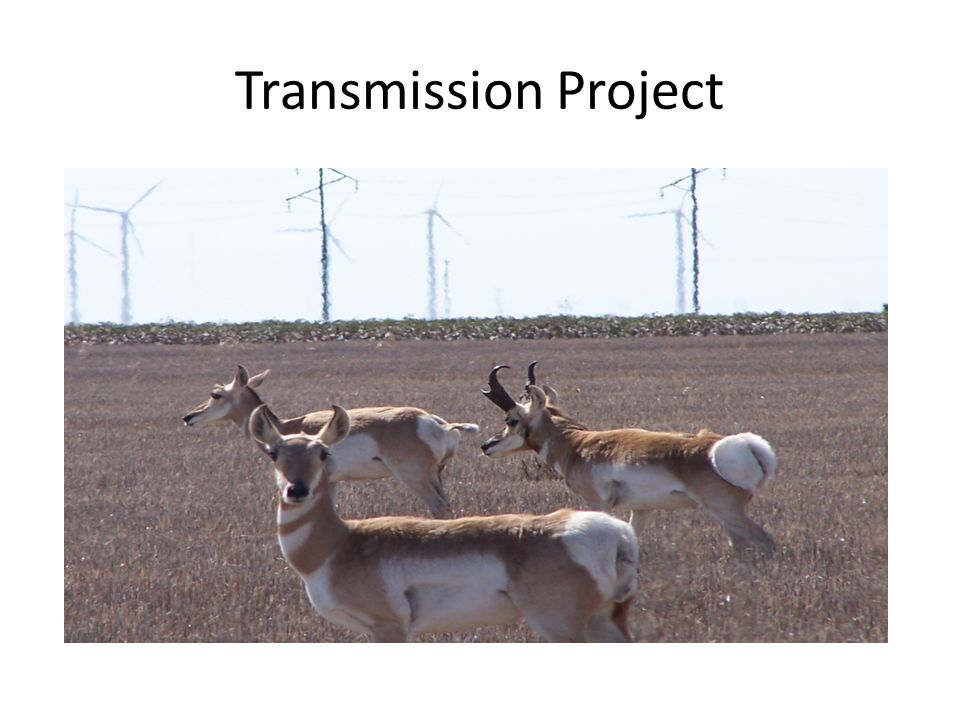 Transmission Project