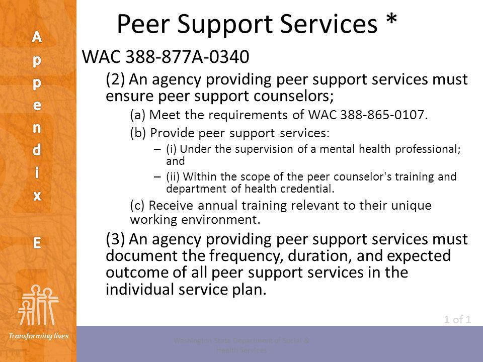 Peer Support Services *