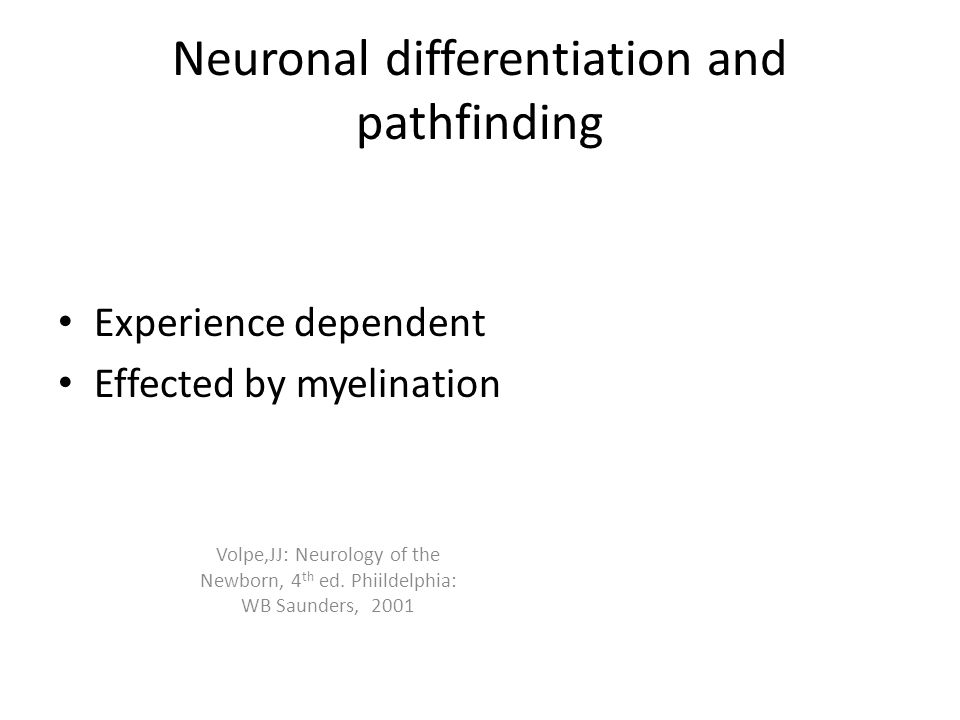 Neuronal differentiation and pathfinding