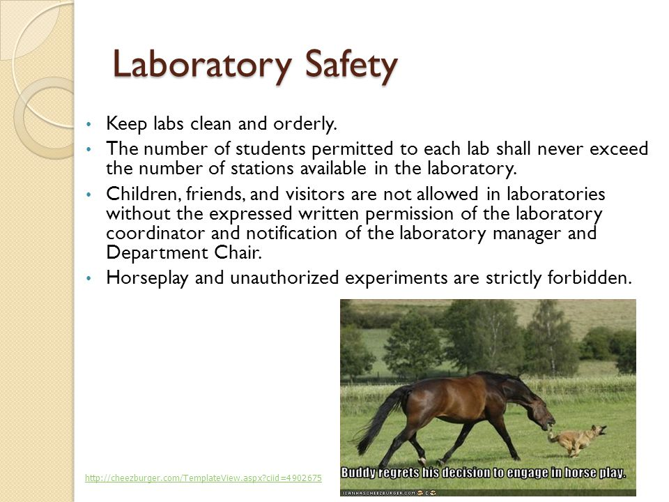 Laboratory Safety Keep labs clean and orderly.