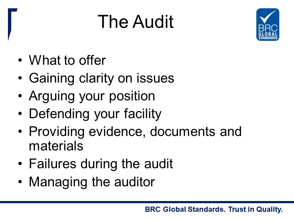The Audit What to offer Gaining clarity on issues