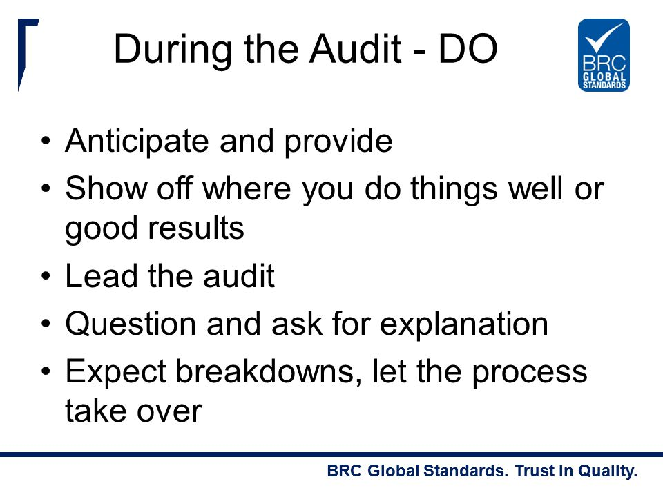 During the Audit - DO Anticipate and provide