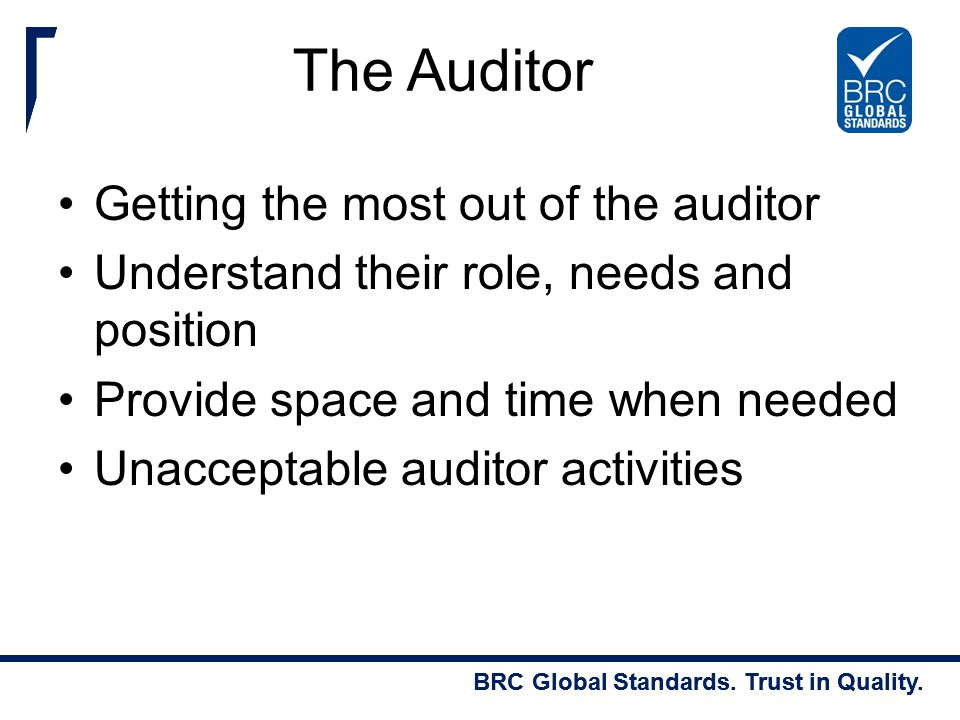 The Auditor Getting the most out of the auditor