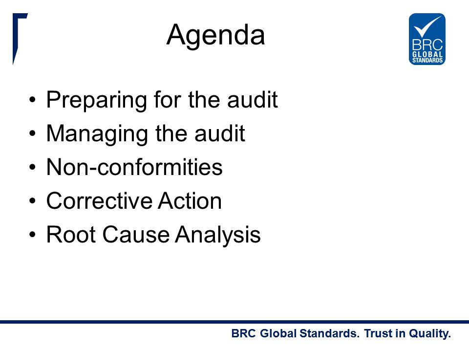 Agenda Preparing for the audit Managing the audit Non-conformities