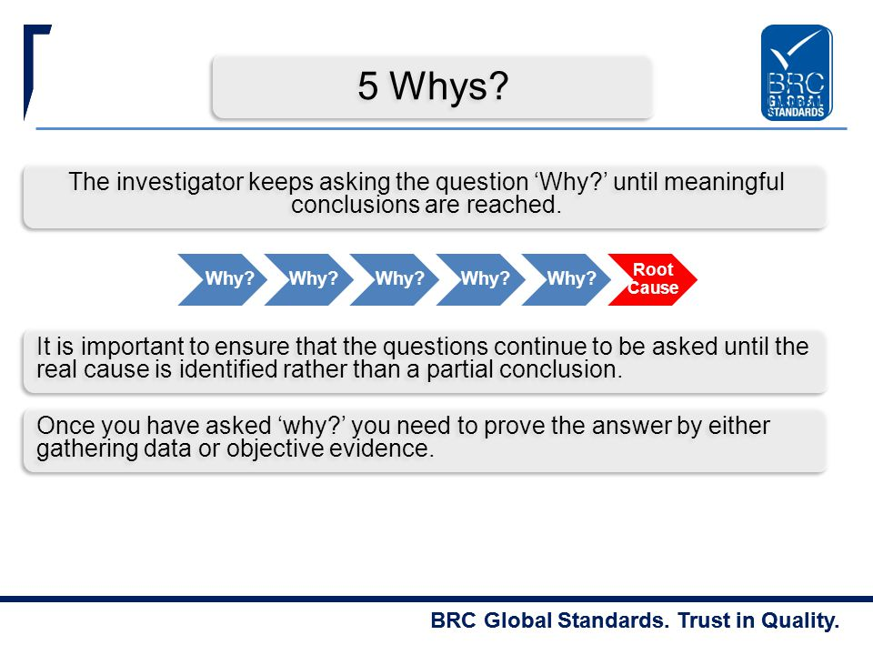 5 Whys The investigator keeps asking the question 'Why ' until meaningful conclusions are reached.