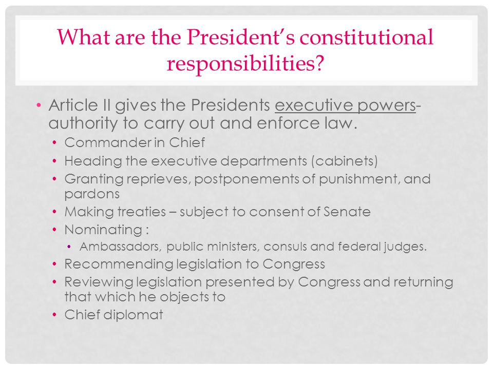 What are the President's constitutional responsibilities