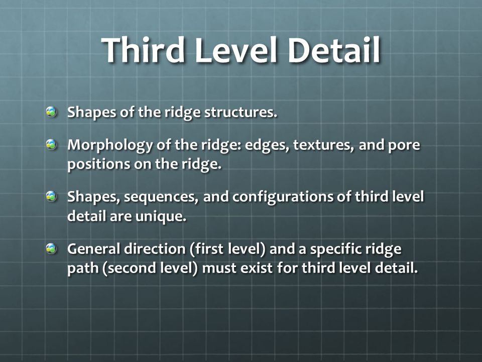 Third Level Detail Shapes of the ridge structures.