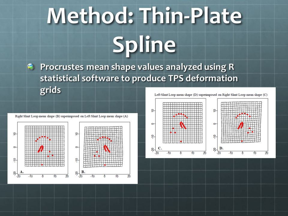 Method: Thin-Plate Spline