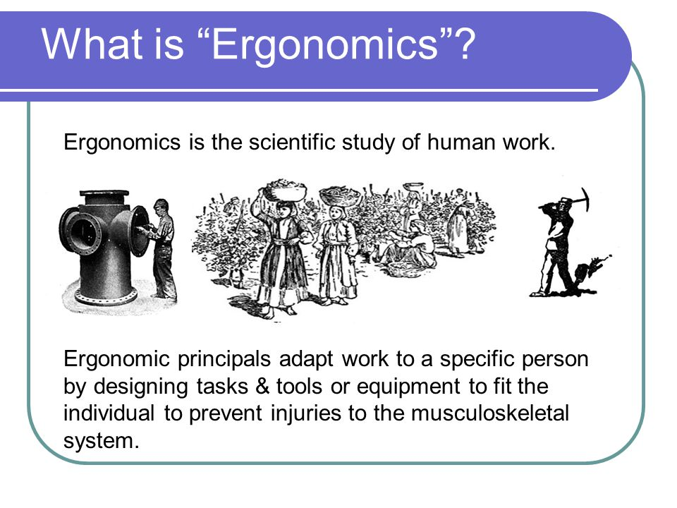 What is Ergonomics Ergonomics is the scientific study of human work.