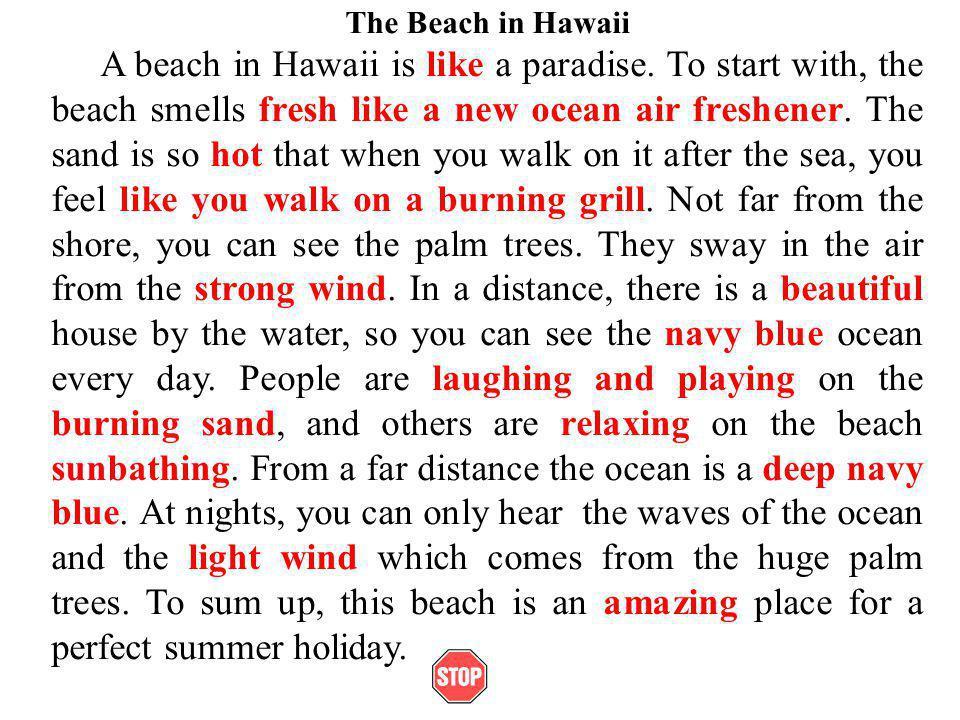 The Beach in Hawaii