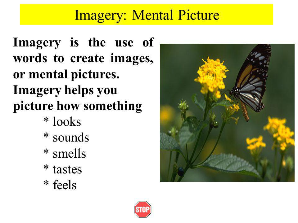 Imagery: Mental Picture