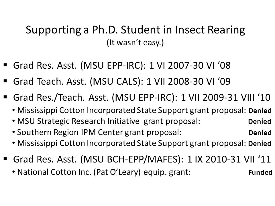 Supporting a Ph.D. Student in Insect Rearing