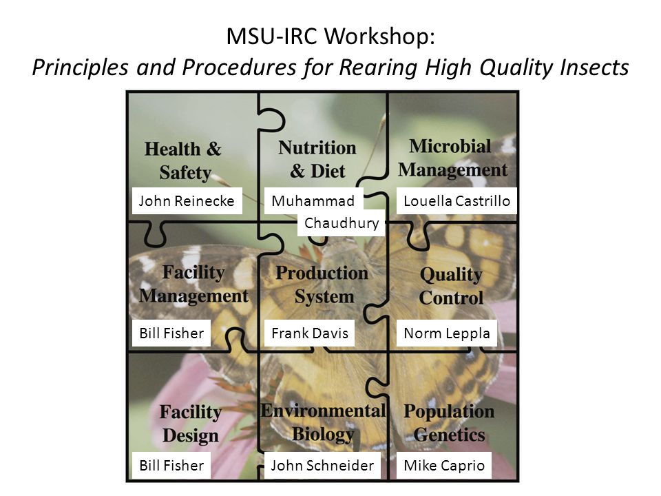 MSU-IRC Workshop: Principles and Procedures for Rearing High Quality Insects