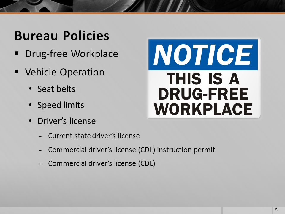 Bureau Policies Drug-free Workplace Vehicle Operation Seat belts