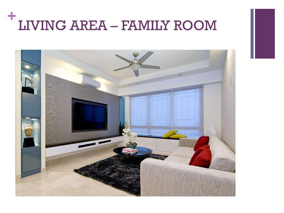 LIVING AREA – FAMILY ROOM