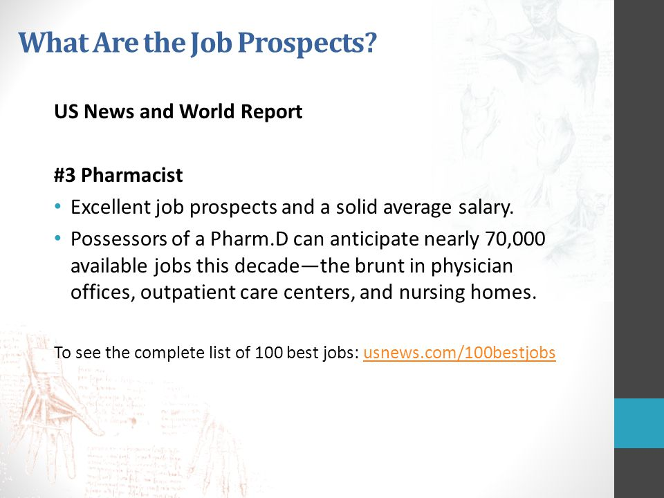 What Are the Job Prospects