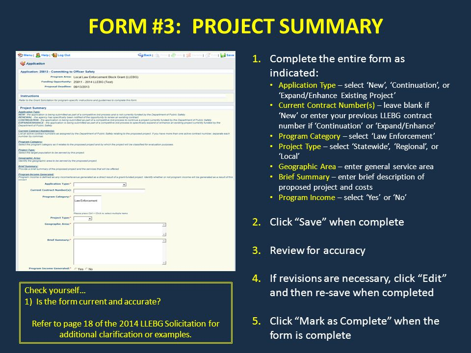 FORM #3: PROJECT SUMMARY