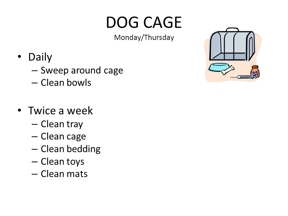 DOG CAGE Monday/Thursday