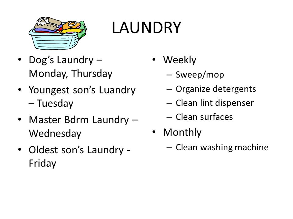 LAUNDRY Dog's Laundry – Monday, Thursday