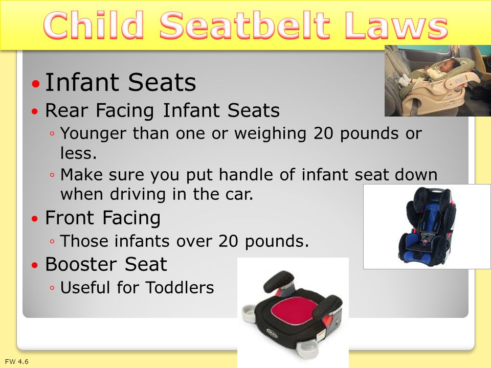 Child Seatbelt Laws Infant Seats Rear Facing Infant Seats Front Facing