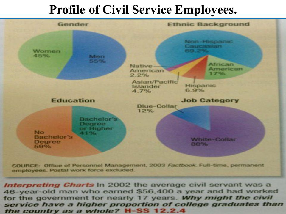 Profile of Civil Service Employees.
