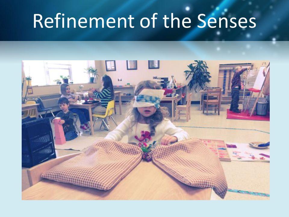 Refinement of the Senses