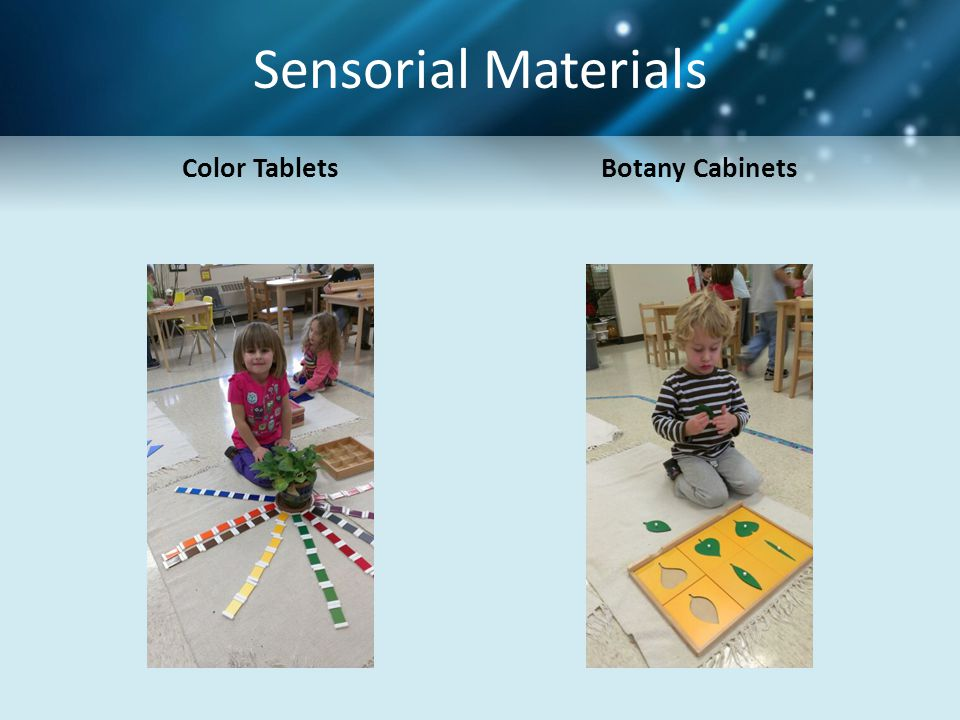Sensorial Materials Color Tablets Botany Cabinets