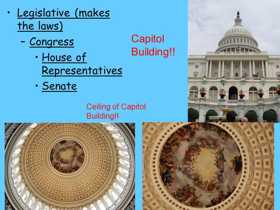 Legislative (makes the laws) Congress House of Representatives Senate