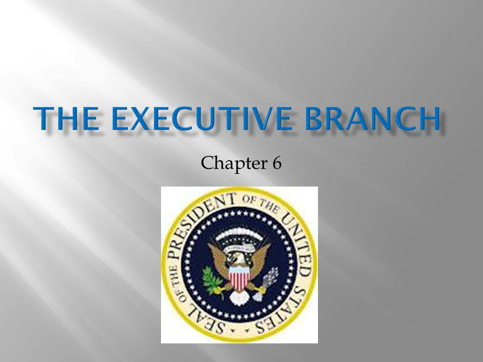 The Executive branch Chapter 6