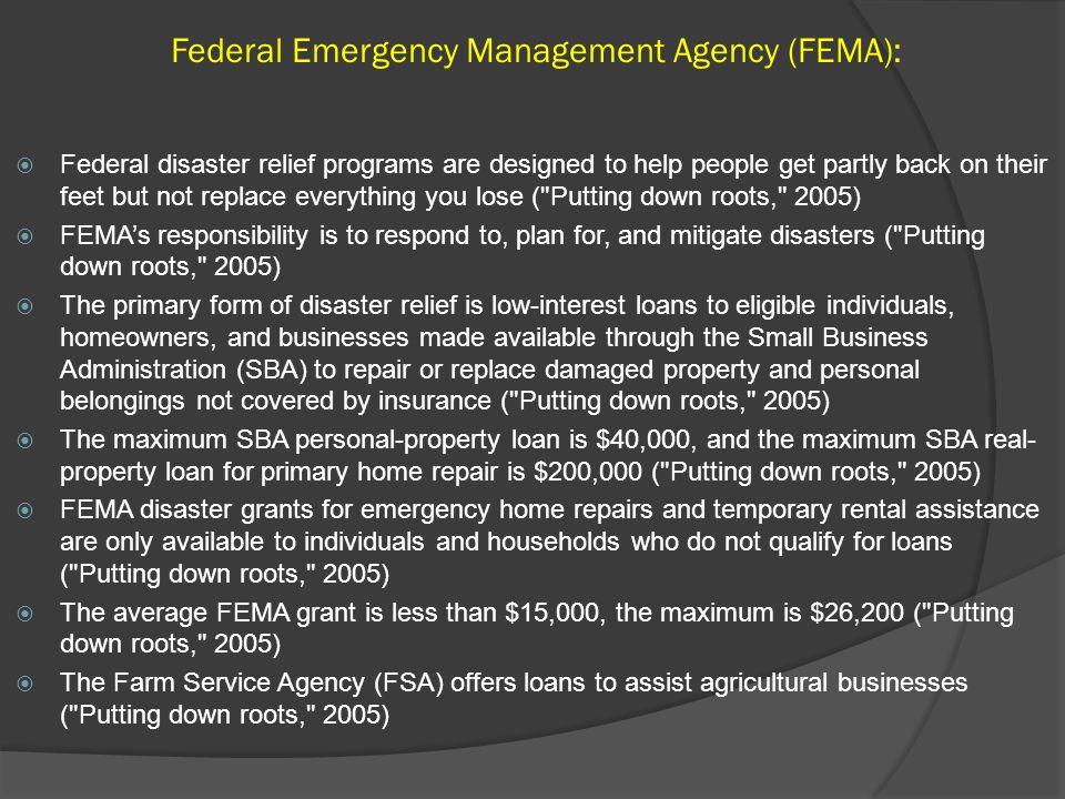 Federal Emergency Management Agency (FEMA):