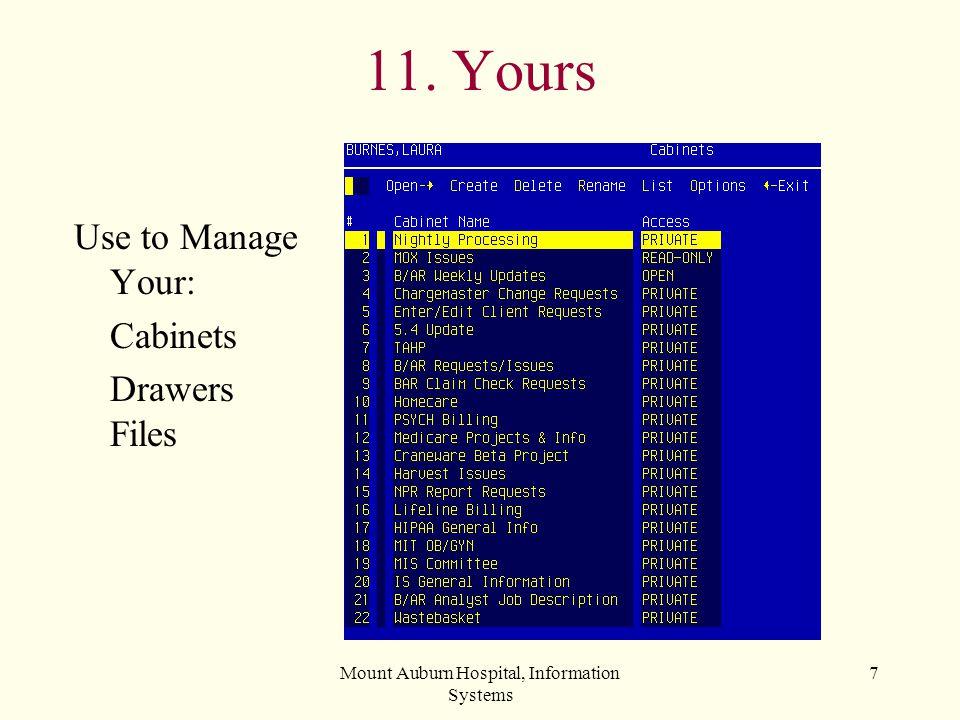 Mount Auburn Hospital, Information Systems